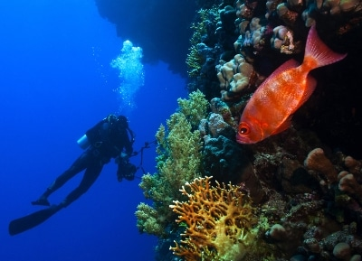 scuba diving equipment uk